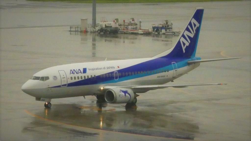 737-500__2_.jpg
